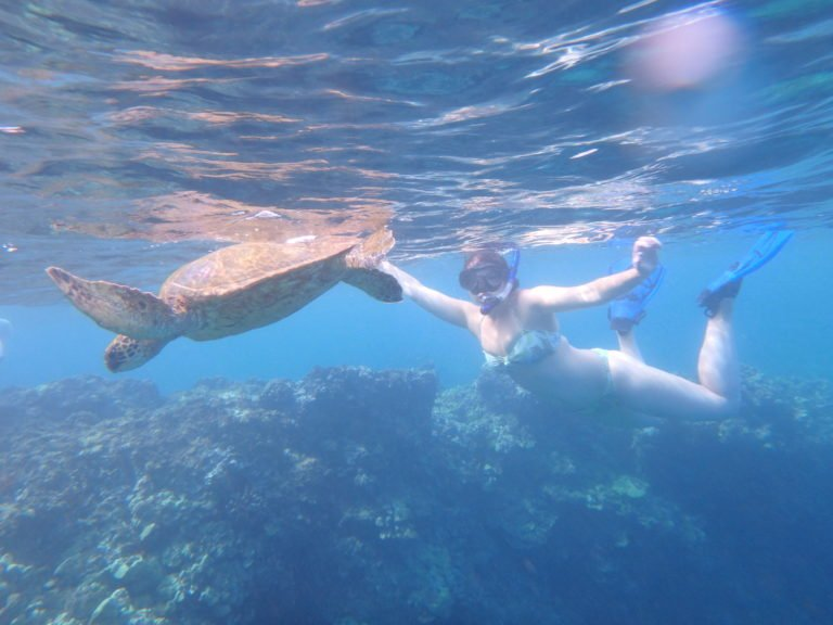 4 Maui Activities to Experience the Ocean the Hawaiian Way