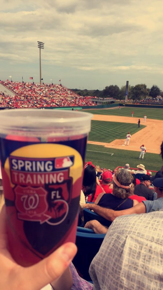 Spring Training in Florida Tips